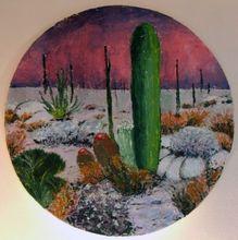 Gisela CLEV (1952) - desert en Arizona