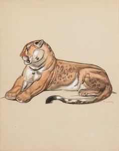 Paul JOUVE (1878-1973) - Panthère au repos de profil
