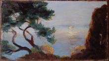 René SEYSSAUD (1867-1952) - pins en bord de mer