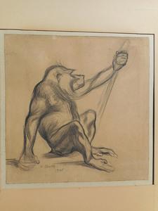 Paul JOUVE (1878-1973) - Le  BABOUIN