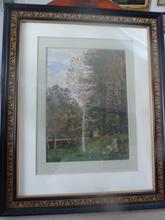 Hugo DARNAUT (1851-1937) - Birke in Waldlichtung