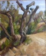 Louis TONCINI (1907-?) - Les oliviers