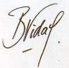 Bernard VIDAL  [ 1944 ]