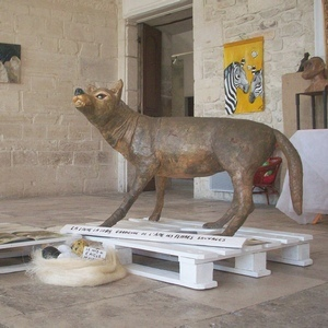 La Loba, la louve, gardienne de l'âme des femmes sauvages