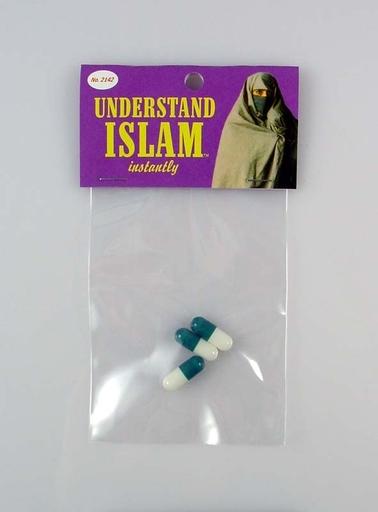 Dana WYSE - Audiovisual-Multimedia - Understand Islam