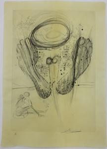 萨尔瓦多·达利 - 版画 - Sa Someter n' appartenait ni au hasard ni a la nature