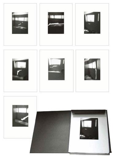 Luc TUYMANS - Print-Multiple - Fenêtres