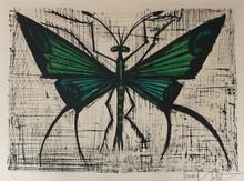 Bernard BUFFET - Estampe-Multiple - Le papillon vert