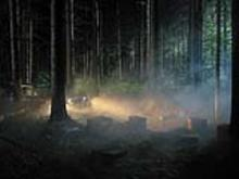 Gregory CREWDSON - Fotografia -  Production Still (Man in the Woods  #4)