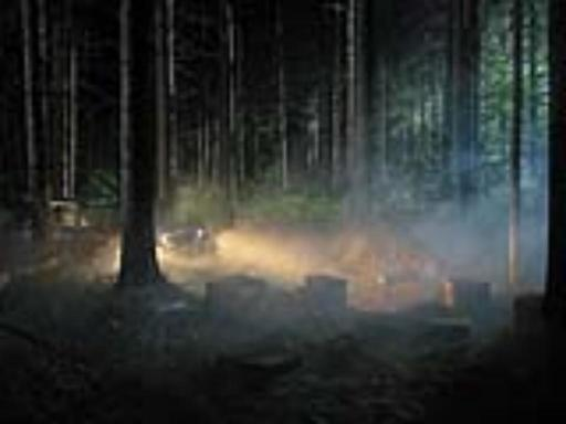 Gregory CREWDSON - Photography -  Production Still (Man in the Woods  #4)