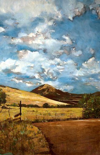 Ayline OLUKMAN - Pittura - Field and mountains