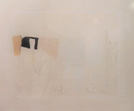 阿尔贝托‧布里 - 绘画 - muffa