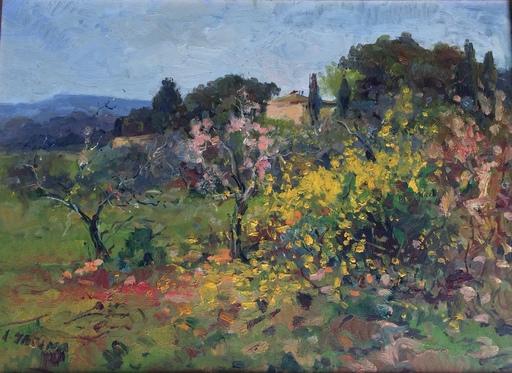 Antonio SBRANA - Painting - Ginestre sul colle