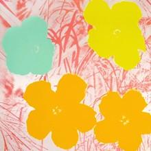 安迪·沃霍尔 - 版画 - Flowers (II.70)