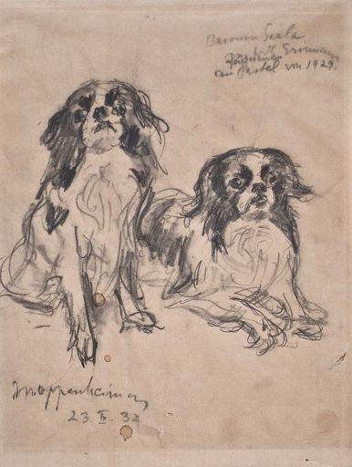 Max OPPENHEIMER - Drawing-Watercolor - Pekinesen