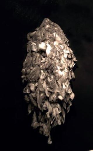 Flavio Tiberio PETRICCA - Scultura Volume - Nuvola
