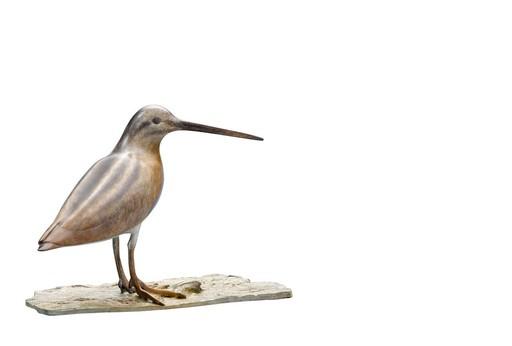 Mark DEDRIE - Escultura - Bécassine des marais