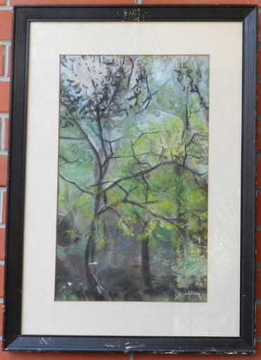 Janko ALEXY - Dibujo Acuarela - Forest