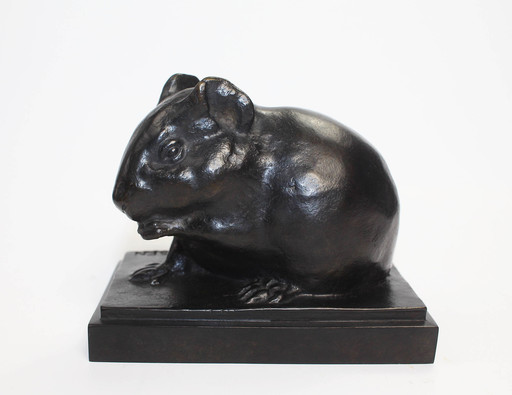 Armand PETERSEN - Sculpture-Volume - Cobaye , cochon d'inde