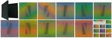 Carlos CRUZ-DIEZ - Stampa Multiplo - Inducción Cromática a doble frecuencia