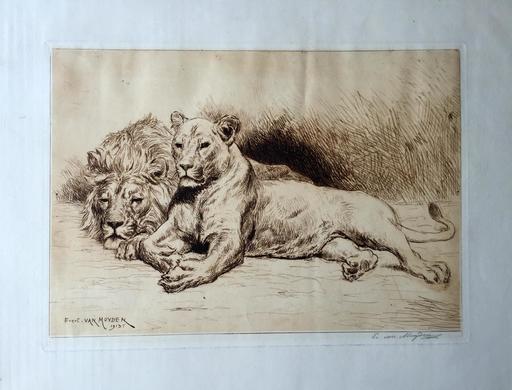 Ewert Louis VAN MUYDEN - 版画