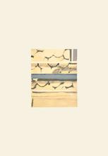 Luc TUYMANS - Estampe-Multiple - Firewood