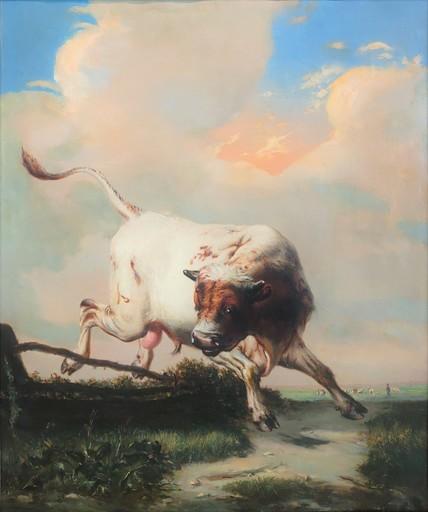 Carl Rudolf S. HUBER - Gemälde - Wilder Stier auf der Weide