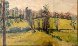 """Pierre BRUNE - Painting - """"LES COLLINES BOISEES"""""""