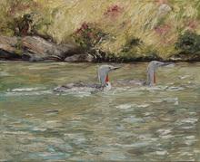 Ute MEYER - Gemälde - Sterntaucher