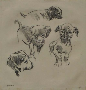 "Robert FUCHS - Drawing-Watercolor - ""Puppy Studies"" by Robert Fuchs, ca 1930"