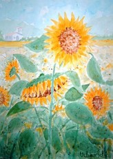 Valerio BETTA - Dibujo Acuarela - Paesaggio con girasoli-Landscape with sunflowers _ offer pri