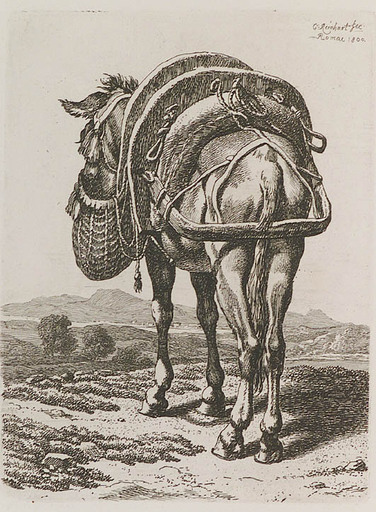 "Johann Christian REINHART - Gemälde - ""Donkey"" by Johann Christian Reinhart"