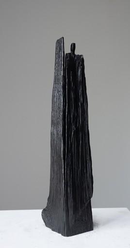 Christian LAPIE - 雕塑 - Le feu des étoiles