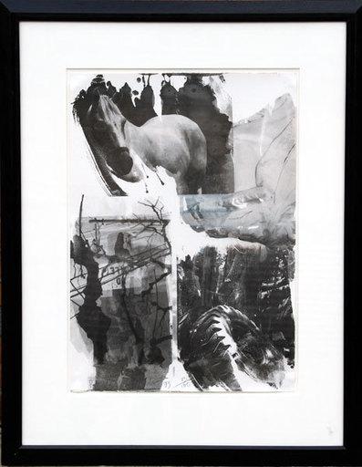 Robert RAUSCHENBERG - Stampa Multiplo - Horse Silk from the Night Sights Series