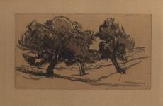 Maximilien LUCE - Dessin-Aquarelle - Trois arbres