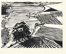 伟恩•第伯 - 版画 - River Delta and Farms