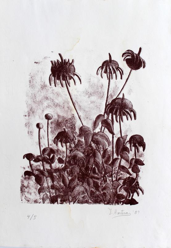 Isabel MORTERA - Stampa-Multiplo - Flores Silvestres