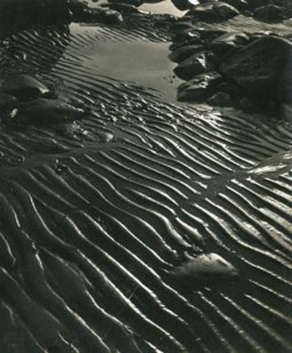 Herbert MATTER - Photography - Beach