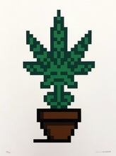 INVADER - Grabado - Hollyweed (Brown Pot)