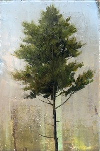 Peter HOFFER - Peinture - Cedar