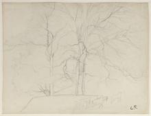 Camille PISSARRO - Drawing-Watercolor - Trees, near La Roche Guyon