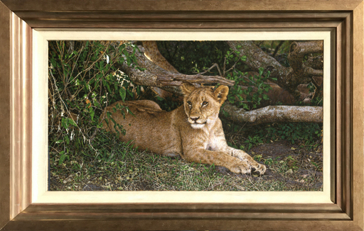 Tony KARPINSKI - Pittura - Lion Cub