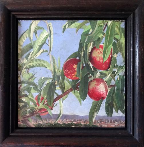 Pedro MORENO MEYERHOFF - Painting - Nectarinas