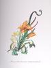 Salvador DALI - Grabado - Hemerocallis Thumbergii Elephanter Furiosa (Elephant Lily)