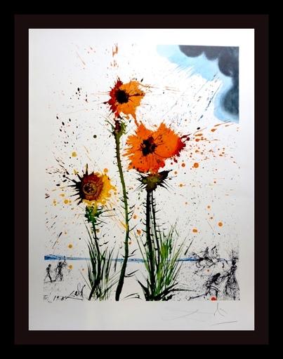 萨尔瓦多·达利 - 版画 - Spring Explosive