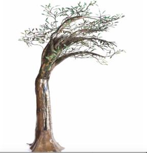 Alirio PALACIOS - Skulptur Volumen - Estudio sobre el Árbol del Olivo nro. 3