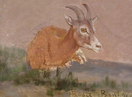 Rosa BONHEUR - Pittura - Goat, resting