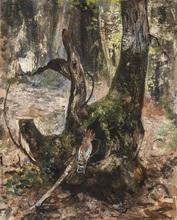 Paul Friedrich MEYERHEIM - Drawing-Watercolor - Baumstumpf mit Wiedehopf