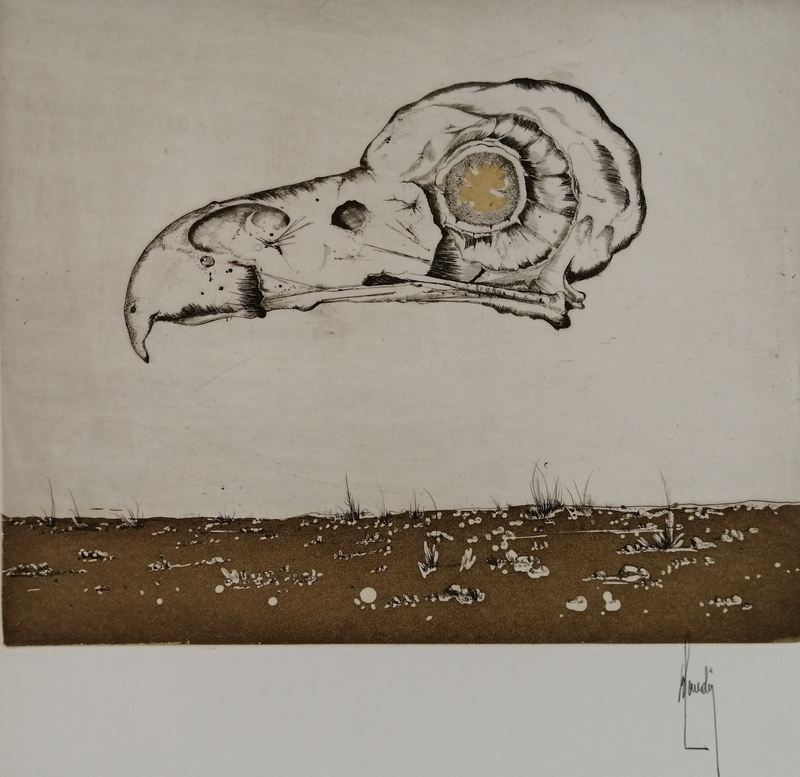 Bernard LOUEDIN - Grabado - Oiseau