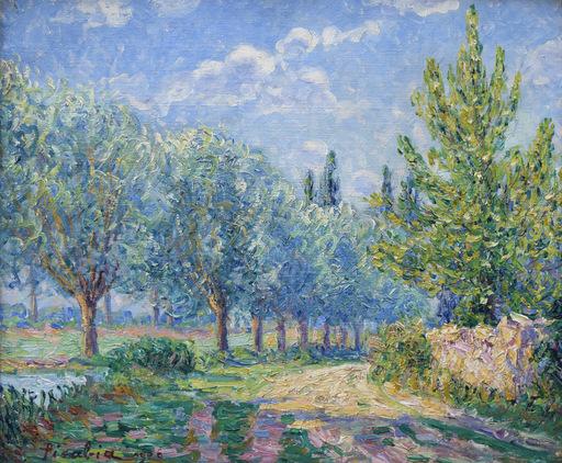 弗朗西斯·毕卡比亚 - 绘画 - Les saules, effet de soleil, Munot